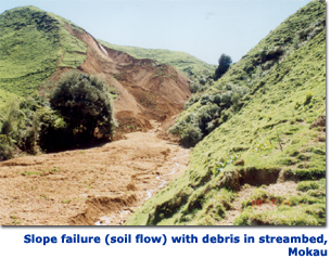 Photograph of landslide showing soil flow with debris in a streambed, Mokau