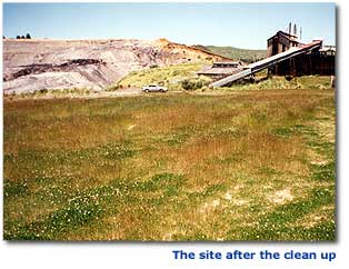 Photograph of the site after the clean up.